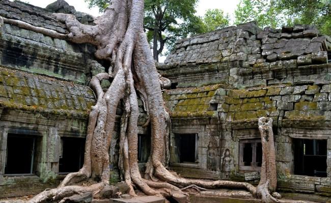 Ta Prohm Cambodia Encircle Photos