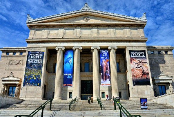 Field Museum Of Natural History In Chicago Illinois