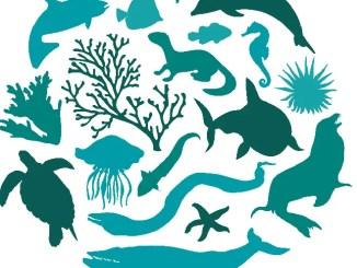 dia de la diversidad biologica