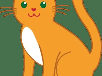 poemas infantiles de gatos