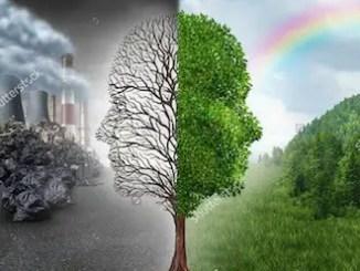 Cuentos sobre ecología