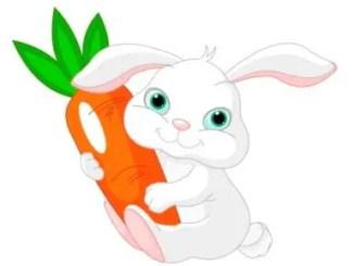 cuentos de animales para niños con moraleja