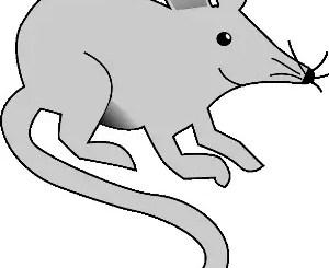Cuentos de ratones para niños de preescolar