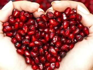 Poemas sobre la fruta granada