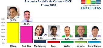Encuesta Comas, IDICE – Enero 2018