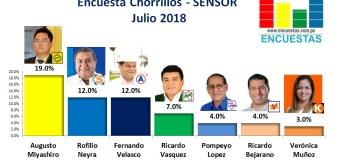 Encuesta Chorrillos, Sensor – Julio 2018