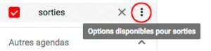Options des agendas Google