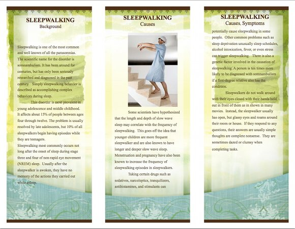 Sleepwalking Brochure By Alysha Shivji