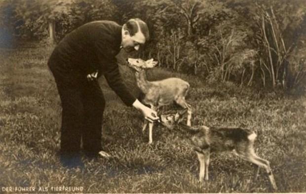 adolf hitler animal rights