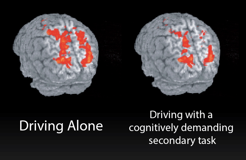 Cognitive Distractions Safe Driving Requires Our Brains