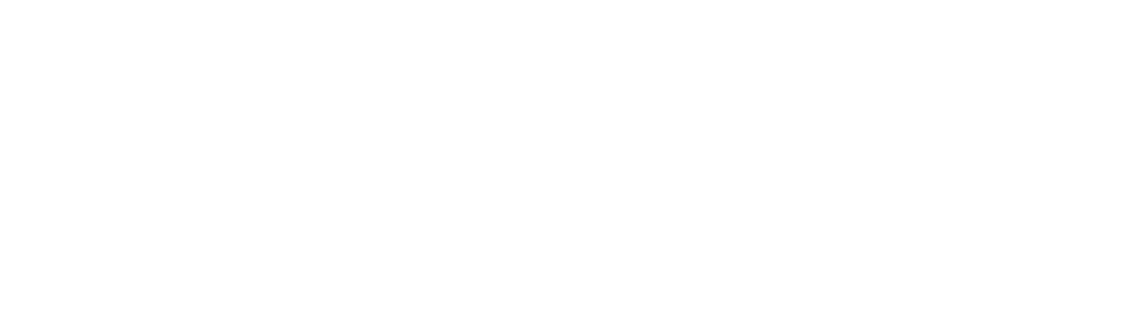 Endeavor Czech