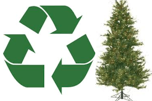 recycle_xmas_trees
