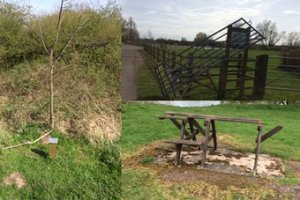 Damage at Watermead Park (photo)