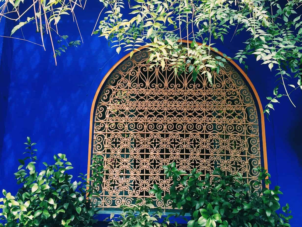 jardin majorelle or majorelle garden is the brain child of famous designer yves saint laurent and walking through its colorful paths you can tell it was - Majorelle Garden