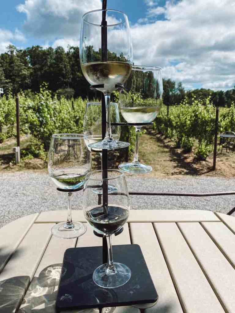 Planning a wine tasting trip to Old Mission Peninsula in Northern Michigan? Here are the 10 best Old Mission Peninsula wineries you need to stop at.