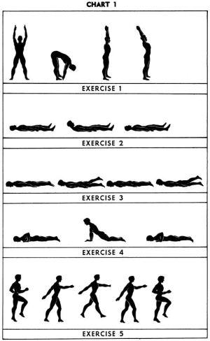 5BX exercises: Chart 1