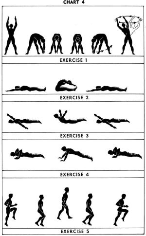 5BX exercises: Chart 4