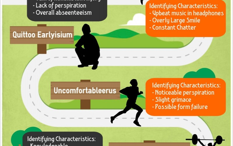 [Infographic] The Workout Continuum…Where will you end up?