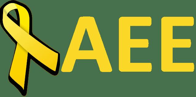AEE. Asociación Endometriosis España. Qué hacemos