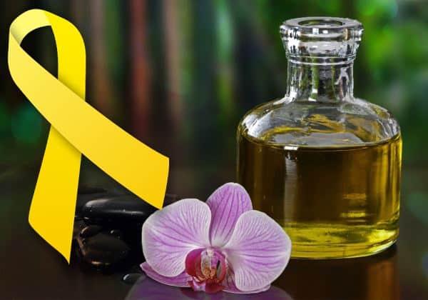 endometriosis terapia natural