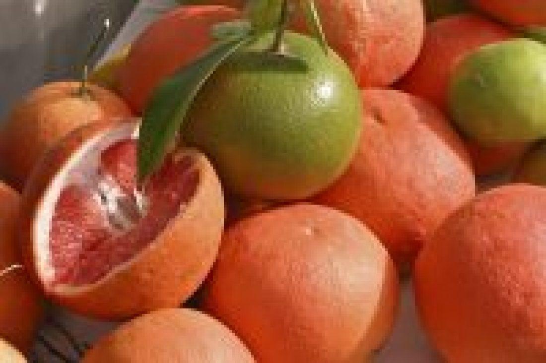 naringenina en pomelos para la endometriosis