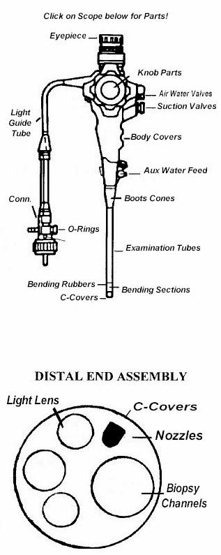 >> Endoscopes Endoscopy Olympus Pentax Fujinon Light Guide