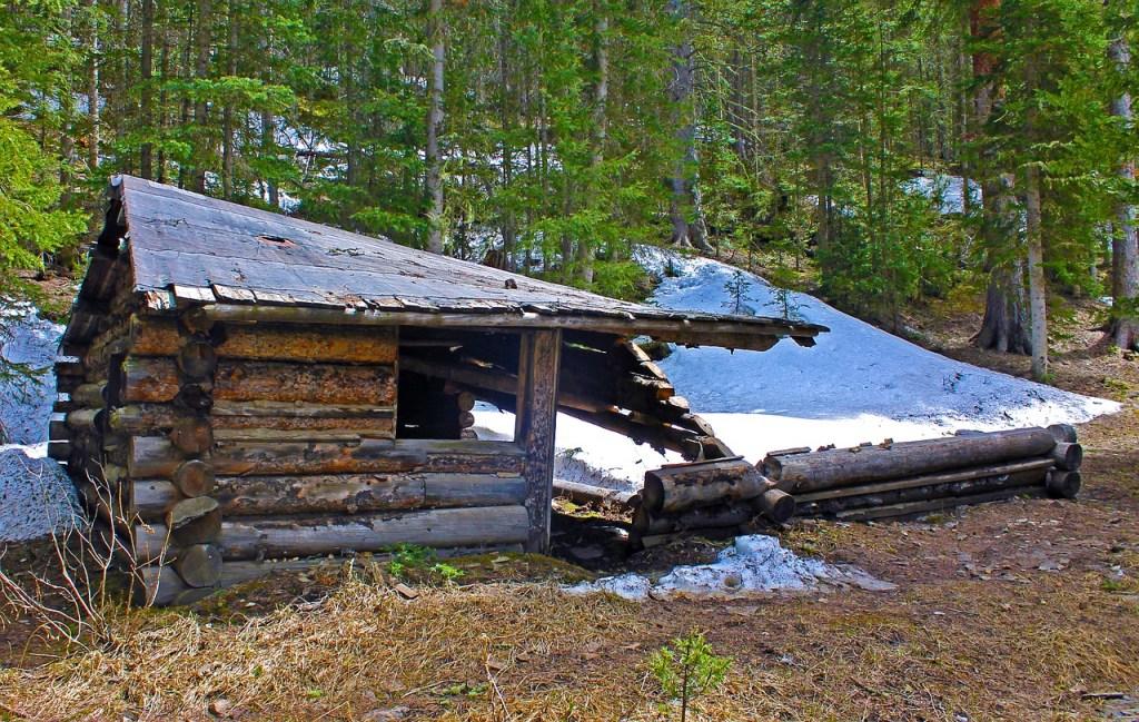 Old Log Cabin ruins