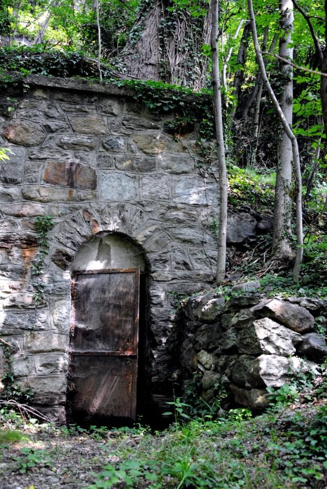 Door in Forest