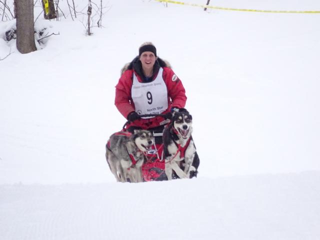 3rd Annual Spirit Mountain Sled Dog Race | Endurance Kennels LLC