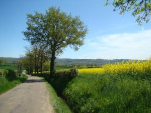 cycling-april-2015