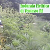 Video in Enduro Elettrico a Piolo di Ventasso RE del 7/21