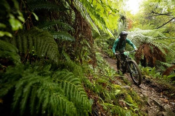 Jungle et pluie ne font pas bon ménage...