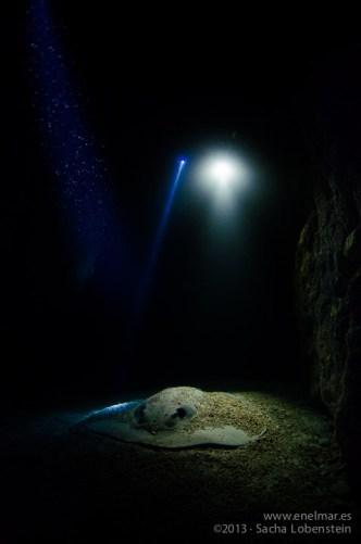 Chucho en el tunel de Garachico