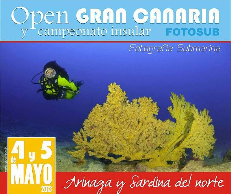 Arturo Telle y Laura Molina ganadores del Campeonato Insular de Gran Canaria de Fotosub 2013