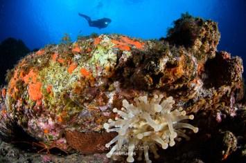 20151102-1127-SachaLobenstein-enelmar.es-Punta Prieta - El Espigon