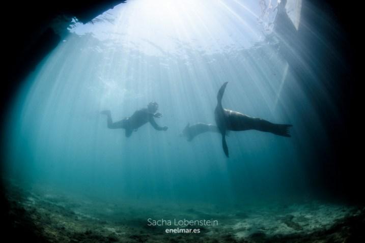 20160531-1211 - Sacha Lobenstein - enelmar.es - Oceanarium Explorer