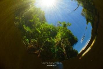 20161009-1317-sacha-lobenstein-enelmar-es-presa-de-meriga