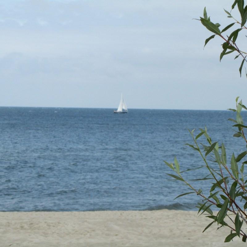 Jastarnia havet