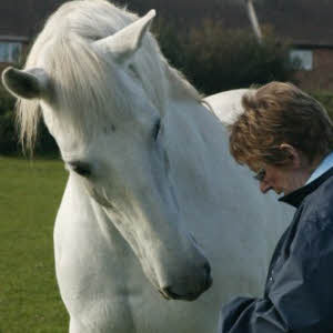 Jan Shaw and Voto, her Andalusian Gelding