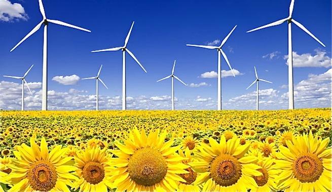 Las renovables bajan el precio de la electricidad