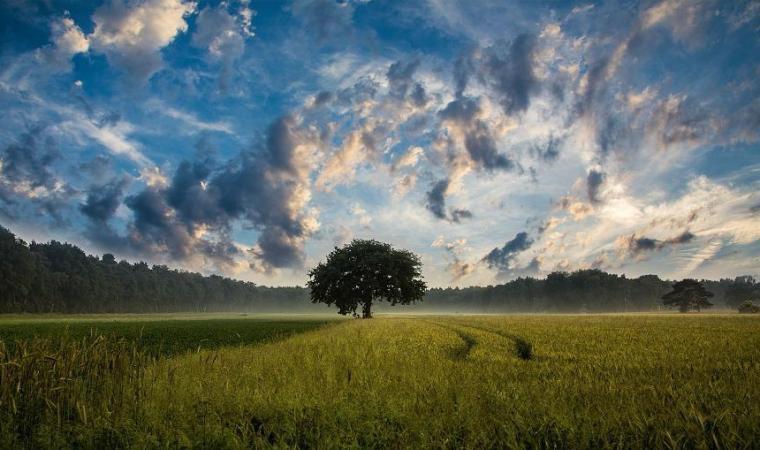 Fondo Efficienza Energetica: il 20 maggio la piattaforma online