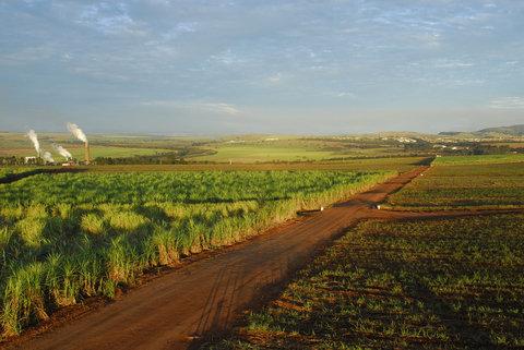 exploitation agricole a vendre