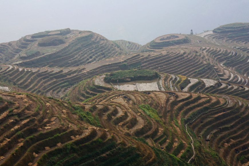 pompe d irrigation agricole caprari