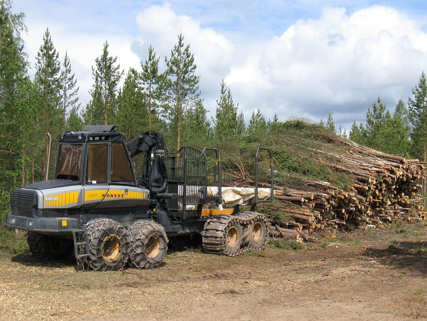 porteur forestier occasion a vendre
