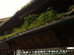 plan maison bois toit plat