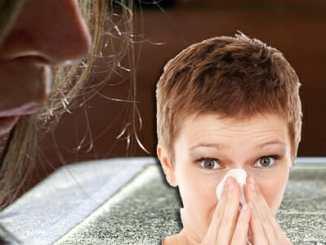 33dd0fbe19f0a165b2c339c22dcade8d - Brnění proti alergii vytvoří houbičky a Manayupa