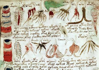 voy03b - Voynichův rukopis: Popisuje paralelní světy?