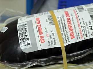 c4a73eff8889d27aa555c067afab695d - Transfúze krve mi změnila osobnost, tvrdí žena