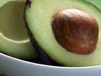 451ef96af2f87c5704212b7e5e6880bb - Vypěstujte si doma svoje vlastní avokádo