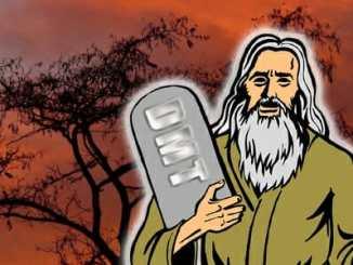 aa03ec0d3ebb1581b7f5a6a0e57a91e5 - Biblický Mojžíš možná bral halucinogeny
